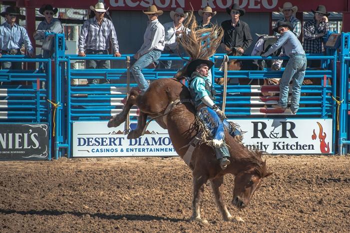 Tucson Rodeo 2014-0113 blog