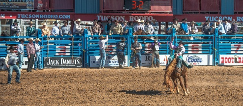 Tucson Rodeo 2014-0122 blog