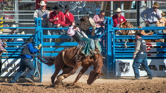 Tucson Rodeo 2014-0172 blog