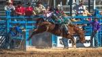 Tucson Rodeo 2014-0173blog