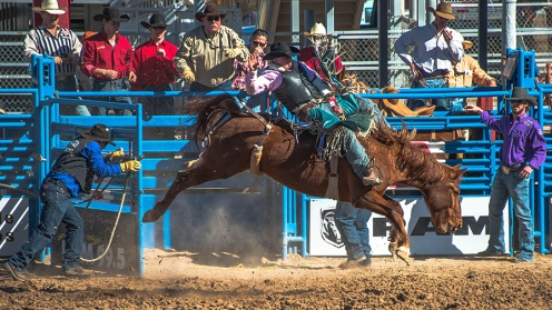 Tucson Rodeo 2014-0173 blog