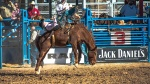 Tucson Rodeo 2014-0174blog