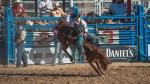Tucson Rodeo 2014-0175blog