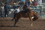 Tucson Rodeo 2014-0184 blog
