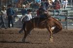 Tucson Rodeo 2014-0184blog