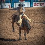 Tucson Rodeo 2014-0198blog