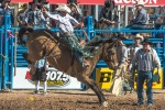 Tucson Rodeo 2014-0204 blog