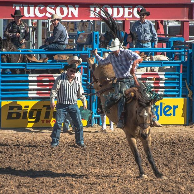 Tucson Rodeo 2014-0206 blog