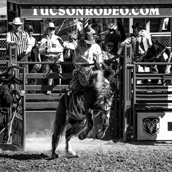Tucson Rodeo 2014-0210_blog