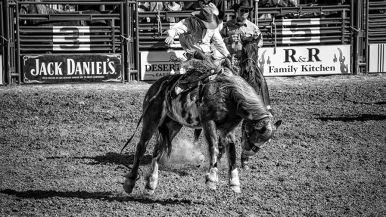 Tucson Rodeo 2014-0212_blog