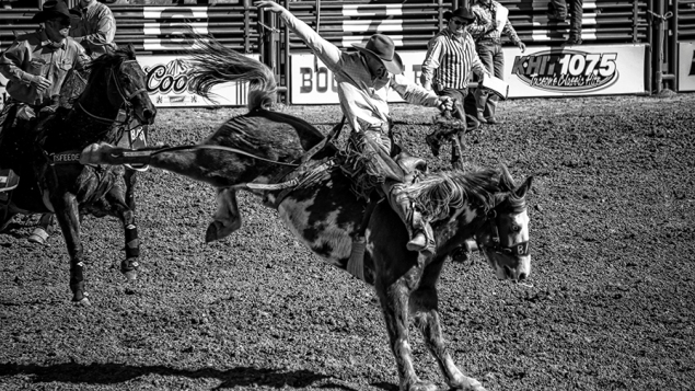 Tucson Rodeo 2014-0214_blog