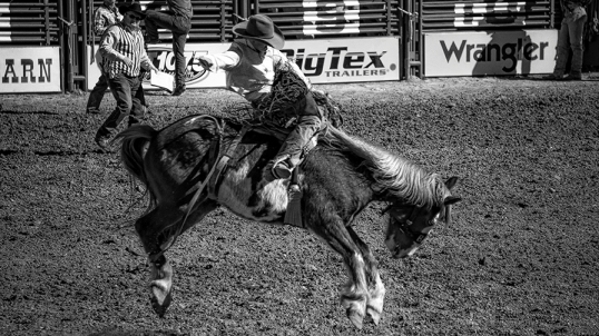 Tucson Rodeo 2014-0215_blog