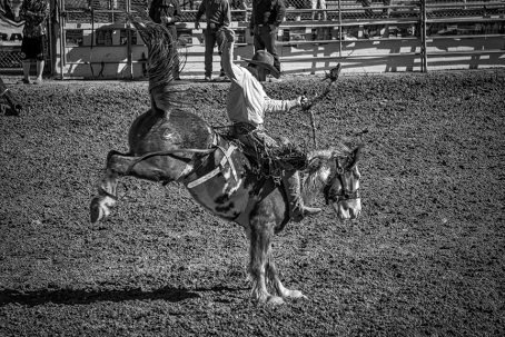Tucson Rodeo 2014-0217_blog