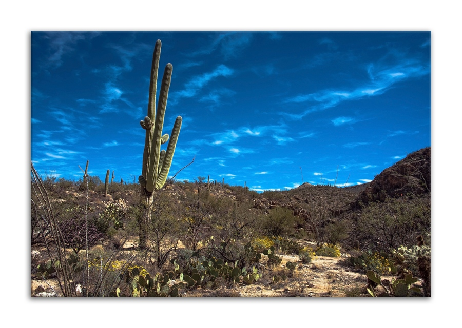 Milagrosa Loop-0745 blog frame