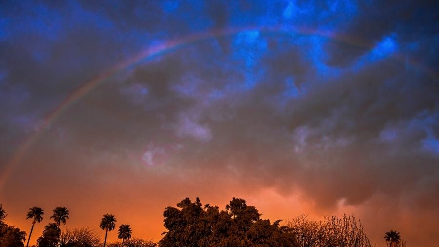 Rainbow-0768 blog