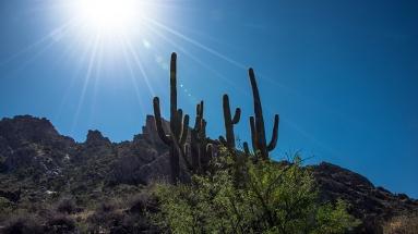 Sutherland Trail (1 of 1)-10 blog