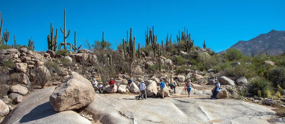 Sutherland Trail (1 of 1)-5 blog