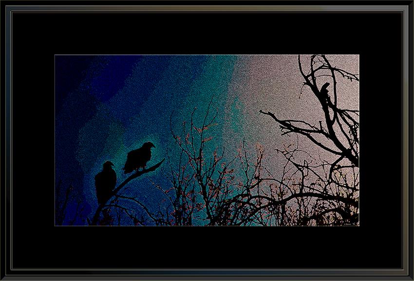 Turkey Vultures (1 of 1)-4 Artblog framed