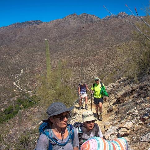 AMC Hiking Blackett's Ridge