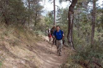 Old Baldy Trail
