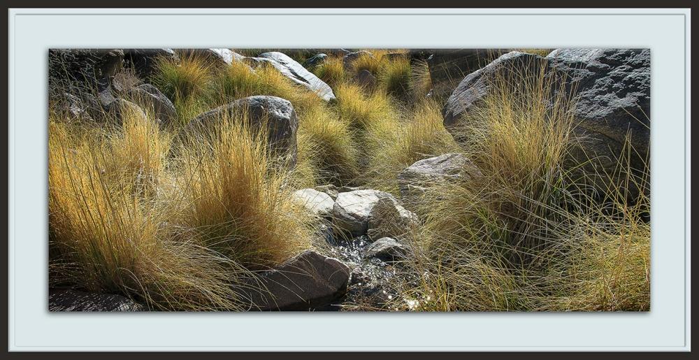 Ventana Canyon-9124 - II blog