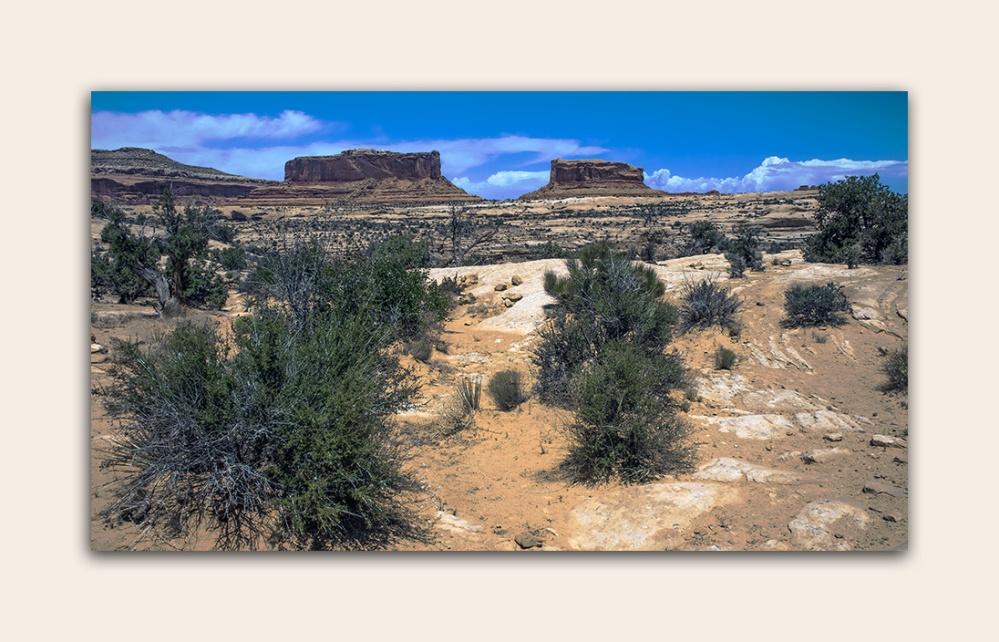 Arches National Park (1 of 1)-13 blog