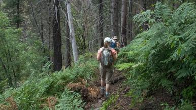 Barb and Dan Nearing Novio Falls Site