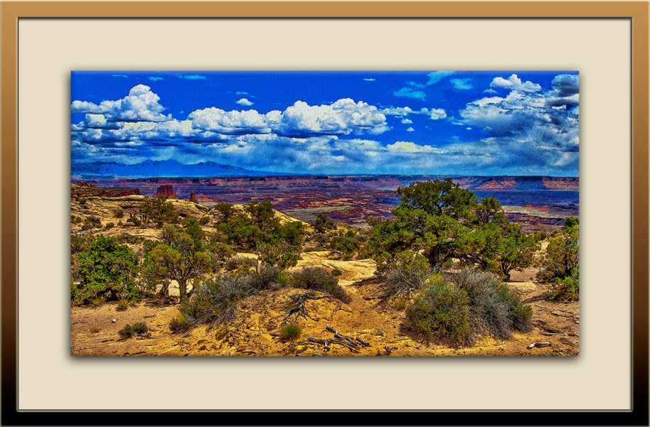 Canyonlands  (1 of 1)-2_Art blog
