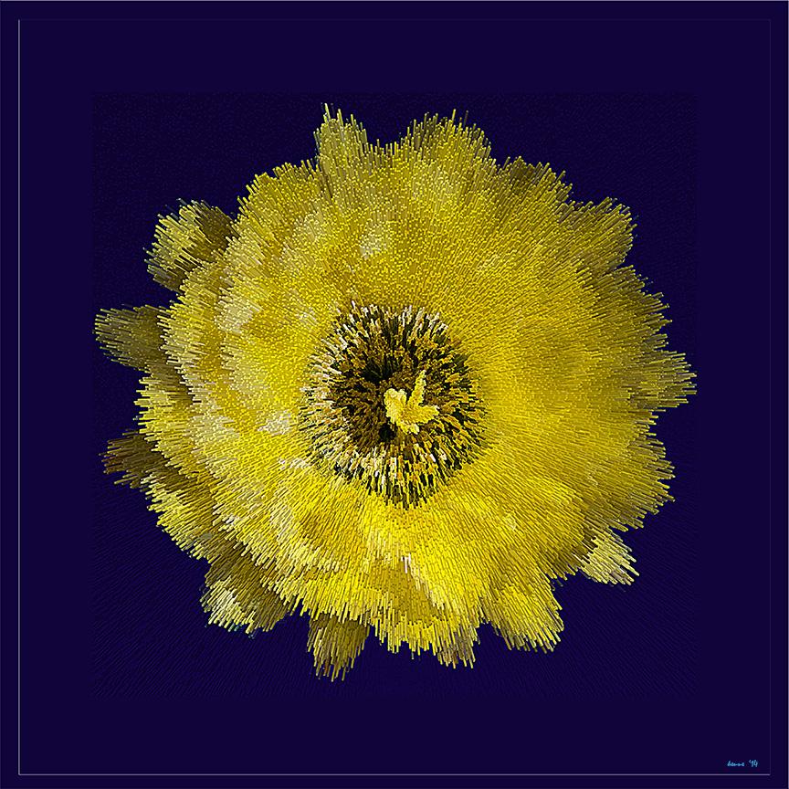 Fellow Cactus Flower (1 of 1) art blog
