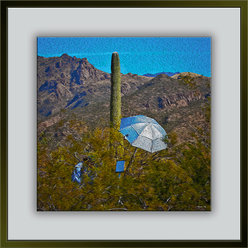 Artist In The Desert (1 of 1) 2x3 art_edit framed blog