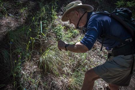 Ed On Marshell Gulch Trail