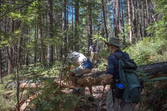 Marshall Gulch Trail
