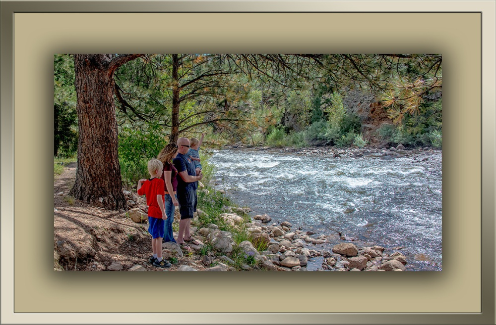 Poudre River Wildflowers (1 of 1)-2 blog framed