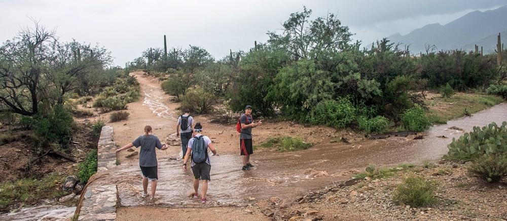 Sabino Canyon (1 of 1)-9 blog