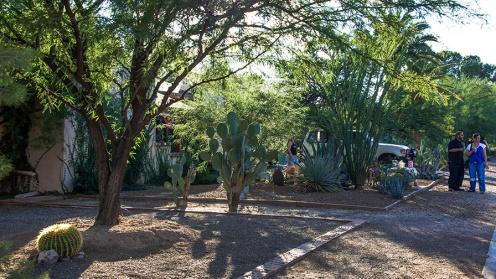 Tucson Porch Fest (1 of 1)-3 blog