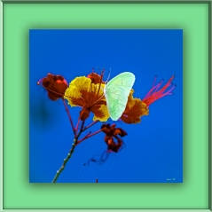 Southern California September 2012