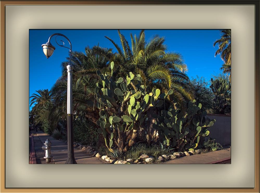 Main Avenue (1 of 1) blog framed