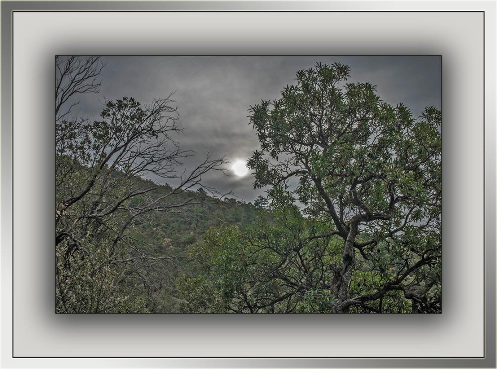Sunrise (1 of 1) blog