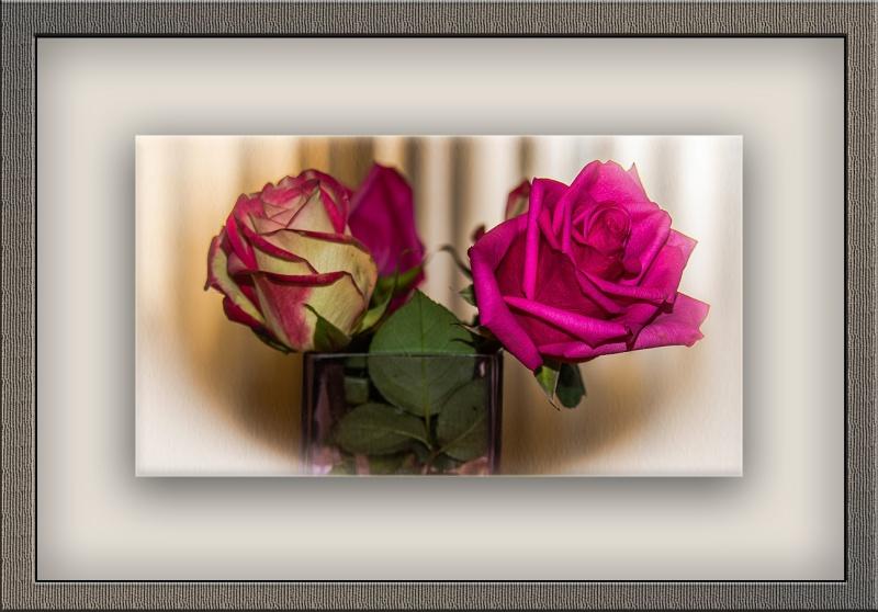 Roses (1 of 1)art blog
