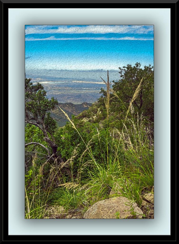 Super Trail Vista (1 of 1) art blog