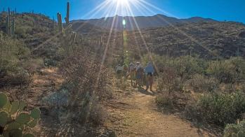 Carillo Trail (1 of 1)-3 blog