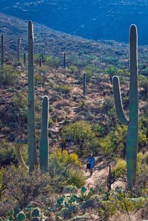 Carillo Trail (1 of 1)-8 blog
