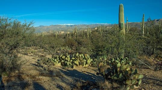 Douglas Springs Trail (1 of 1)-2 blog