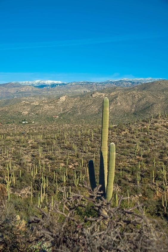 Douglas Springs Trail (1 of 1)-3 blog