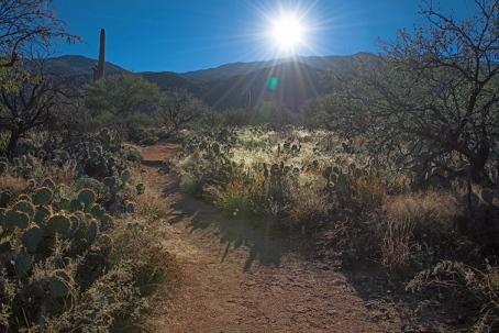 Douglas Springs Trail (1 of 1) blog