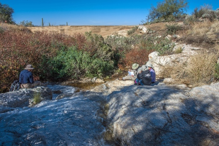 Garwood Dam (1 of 1)-2 blog