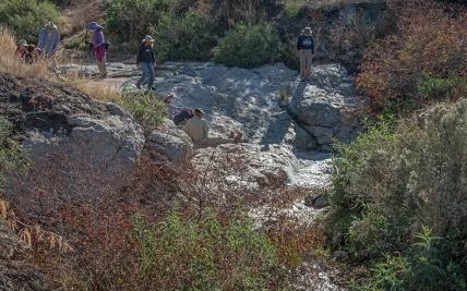 Garwood Dam (1 of 1) blog
