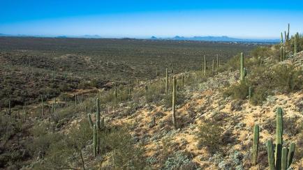 Garwood Trail (1 of 1)-3 blog