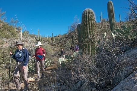 Garwood Trail (1 of 1)-4 blog