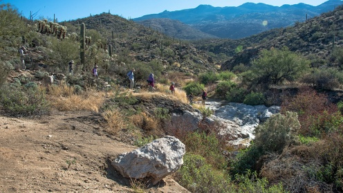 Garwood Trail (1 of 1)-6 blog